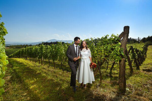 Vjenčanje vinarija Banja Luka